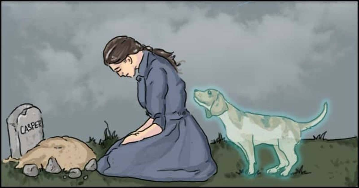 Losing a Pet Might be the Most Painful Thing You Might Experience in Life