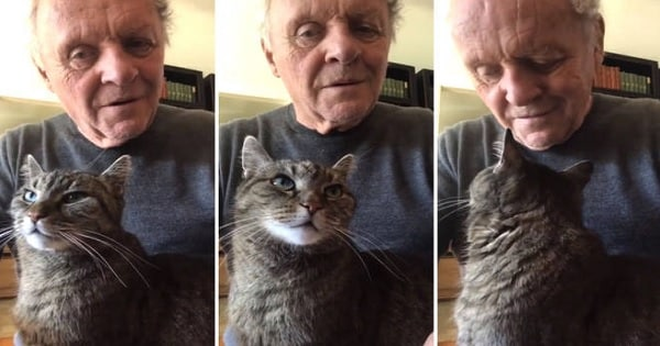 Anthony Hopkins Playing Piano For His Cat While In Self-quarantine Is Just What The World Needs!
