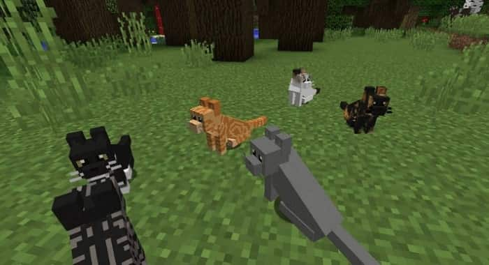 How to Tame Cats in Minecraft