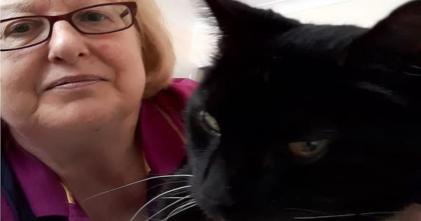 Deaf Cat Reunited with Owner After 12 Long Years
