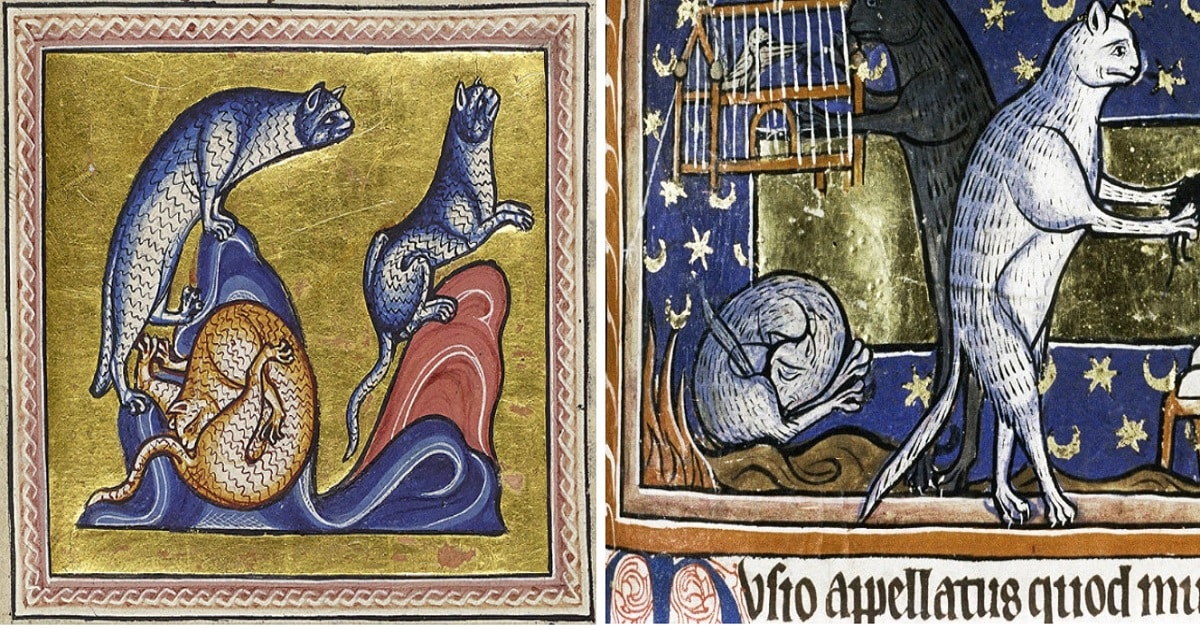 Controversial Medieval Cat Paintings