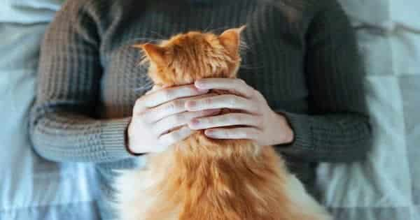 According to Research Cat People Love Their Cats More than Humans
